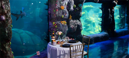 Rainbow Reef Private Dining