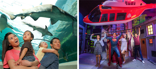 Madame Tussauds and SEA LIFE Family Day