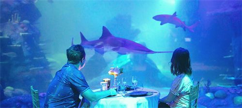 SEA LIFE Sydney Aquarium Private Dining.png (1)